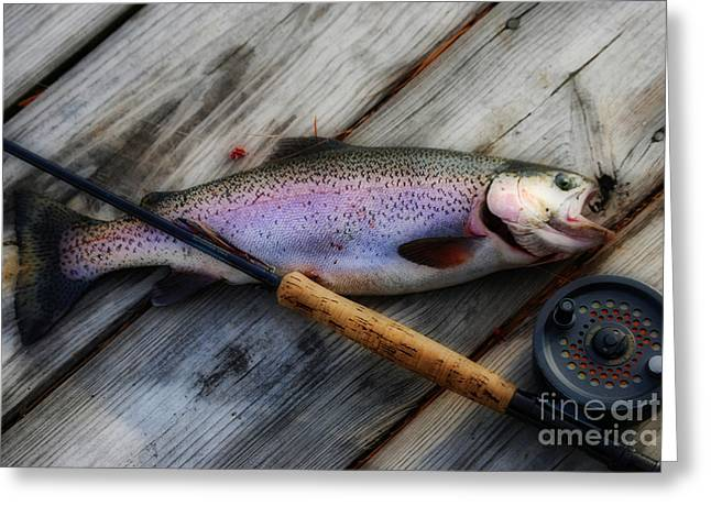 Rainbow Trout Greeting Card by Skip Willits