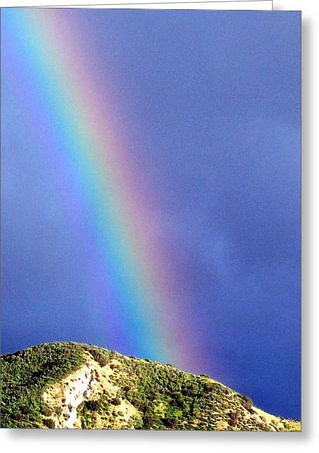 Rainbow Vi Greeting Card