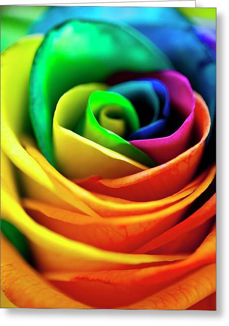Rainbowed Rose Greeting Card by Ian Gowland