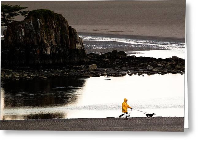 Raincoat Dog Walk Greeting Card by John Daly