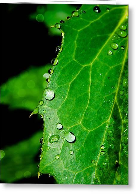 Raindrops On Green Leaf Greeting Card