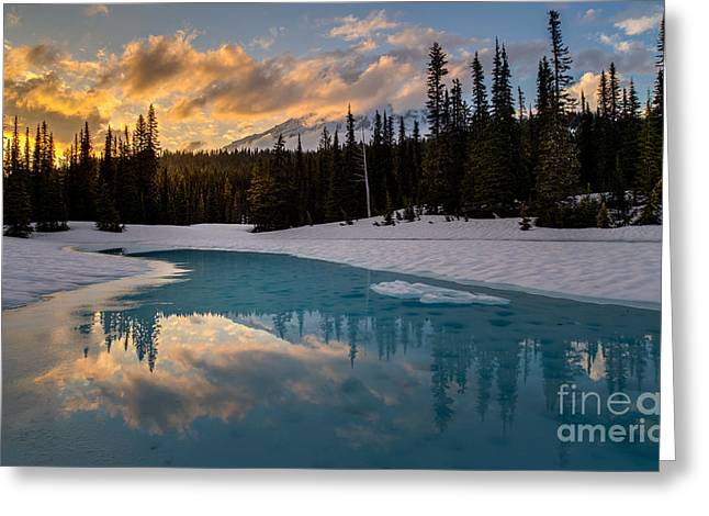 Rainier Fire And Ice Greeting Card by Mike Reid