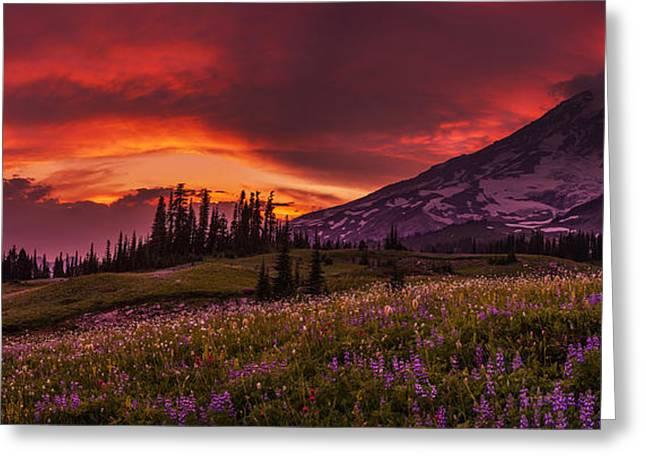 Rainier Fire Mountain Panorama Greeting Card by Mike Reid