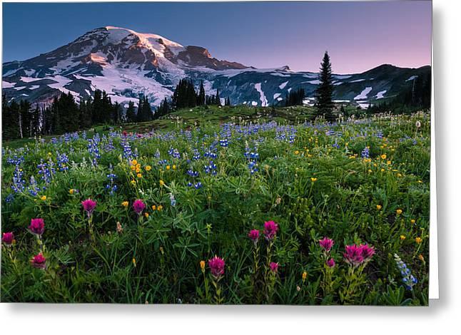 Rainier Flowering Meadow Greeting Card