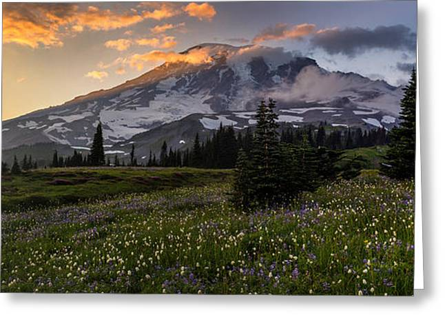 Rainier Meadows Splendor Greeting Card by Mike Reid