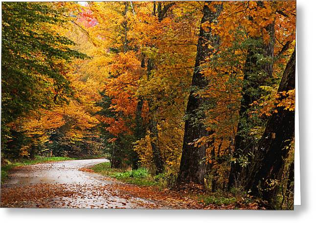 Rainy Autumn Morning Greeting Card