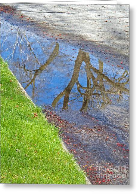 Rainy Day Aftermath Greeting Card by Ann Horn