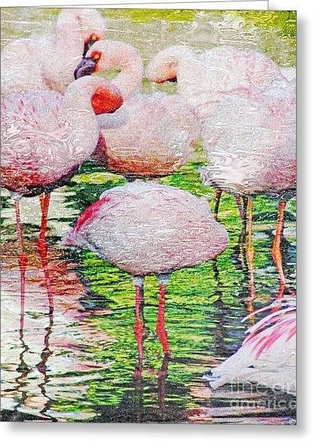 Rainy Day Flamingos 2 Greeting Card