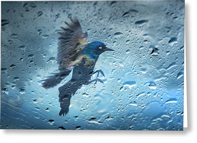 Rainy Day Greeting Card by Steven  Michael