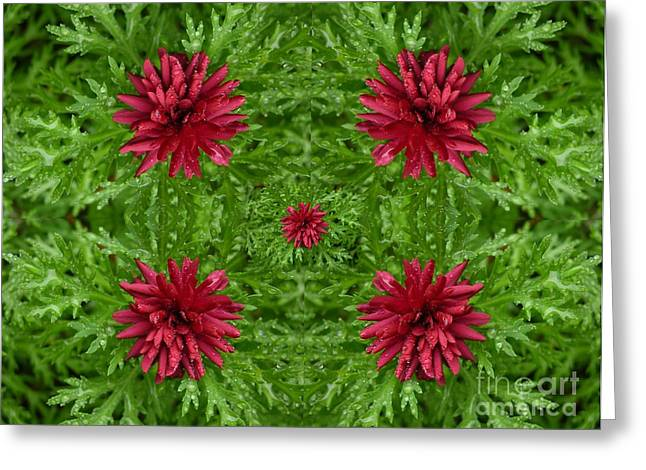 Rainy Flowers Kaleidoscope Greeting Card by Carol Groenen