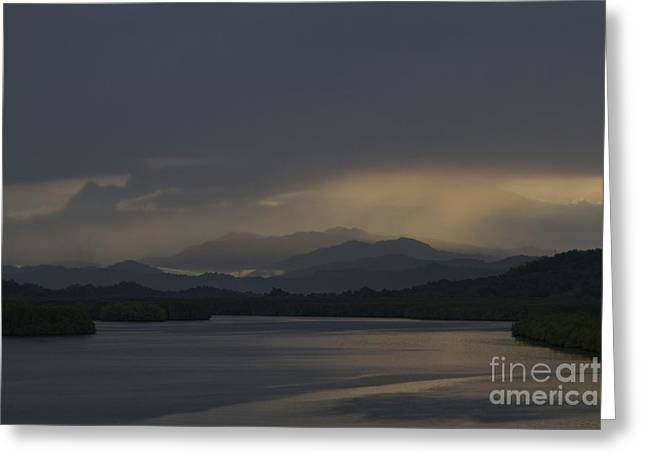 Greeting Card featuring the photograph Rainy Morning by Gary Bridger