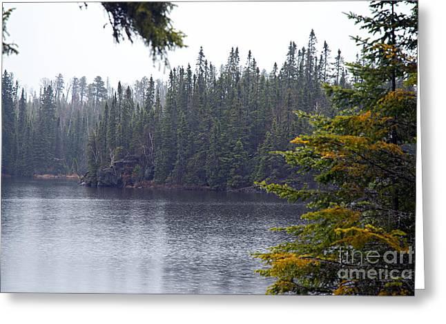 Rainy Morning On Snipe Lake Greeting Card