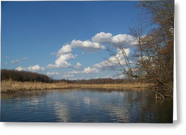 Raisen River Greeting Card by Jennifer  King