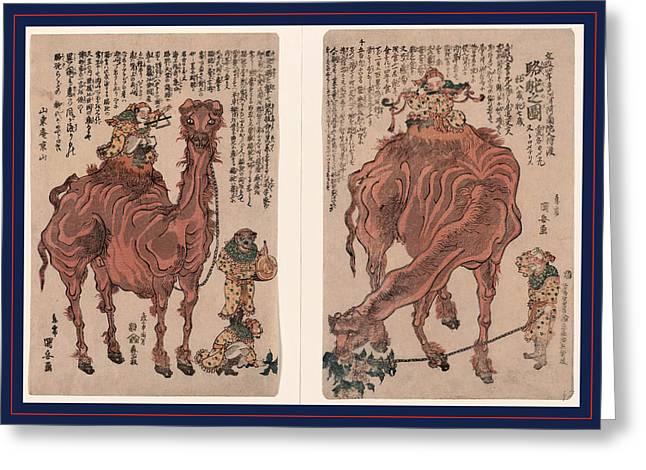 Rakuda No Zu, A Pair Of Camels. 1824., 1 Print 2 Sheets Greeting Card