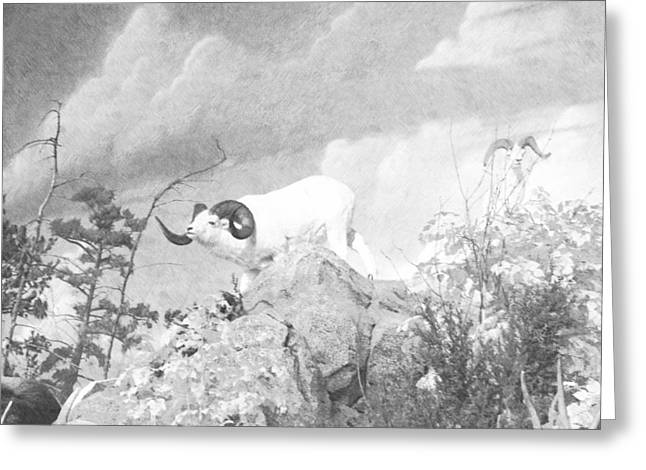 Ram On Cliff Greeting Card