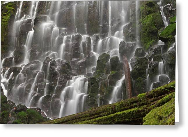 Ramona Falls In Clackamas County, Oregon Greeting Card by William Sutton