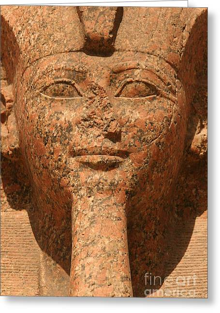 Ramses II Greeting Card by Stephen & Donna O'Meara