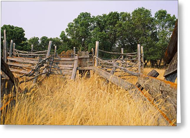 Ranch Cattle Chute In A Field, North Greeting Card by Panoramic Images
