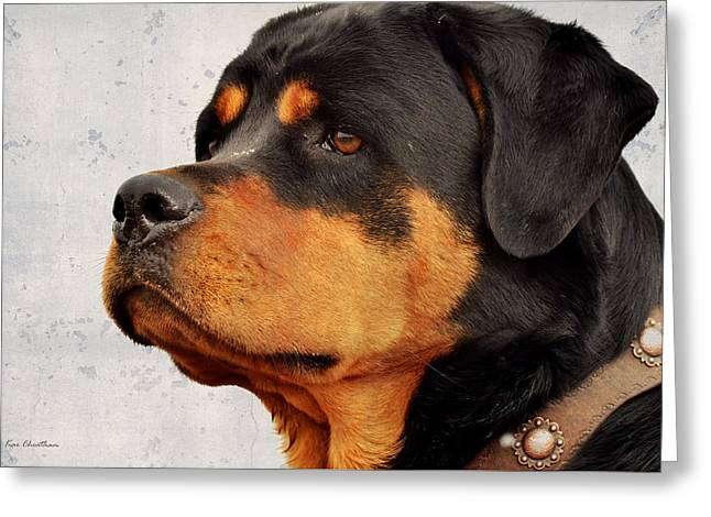 Ranch Dog On Watch Greeting Card