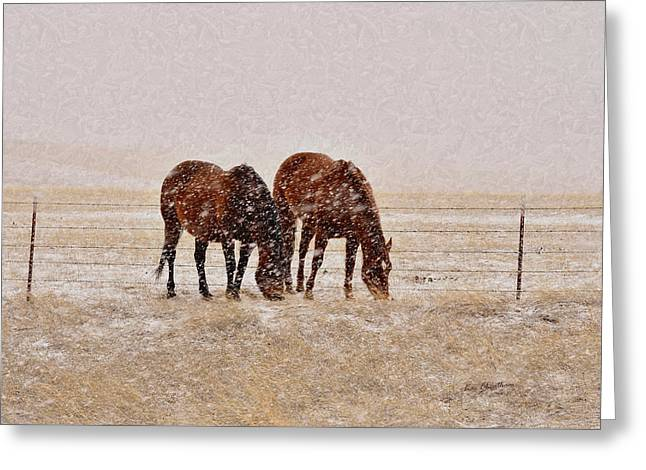 Ranch Horses In Snow Greeting Card by Kae Cheatham
