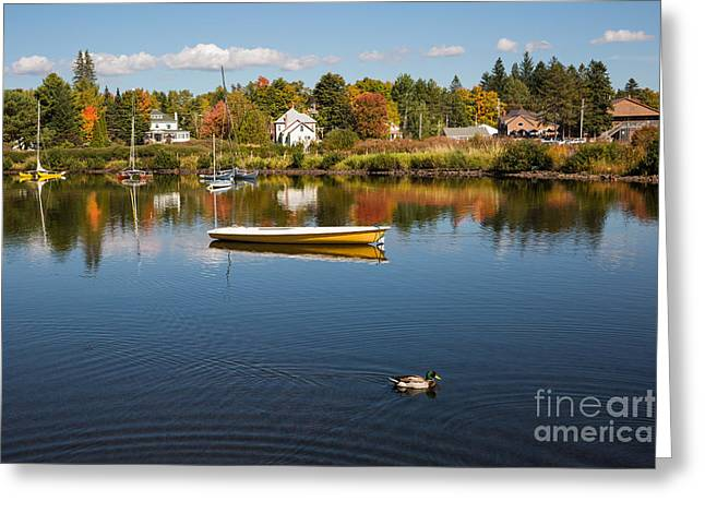 Rangely Lake In Fall Greeting Card by Brenda Giasson
