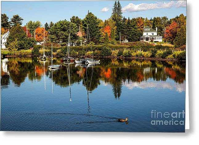 Rangley Lake Maine Greeting Card by Brenda Giasson