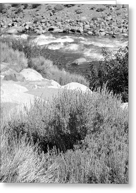 Rapids In White Mountains Greeting Card by Harold E McCray