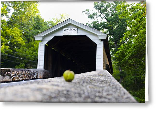 Rapps Covered Bridge Near Phoenixville Pa Photograph by Bill Cannon