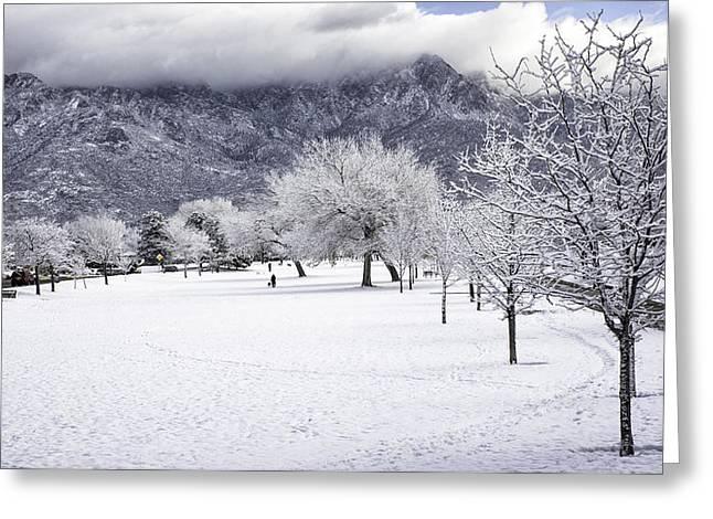 Rare Snowfall Greeting Card