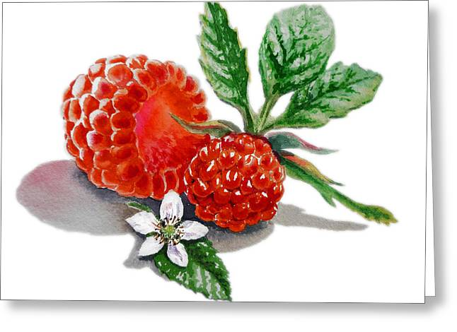 Raspberries  Greeting Card by Irina Sztukowski