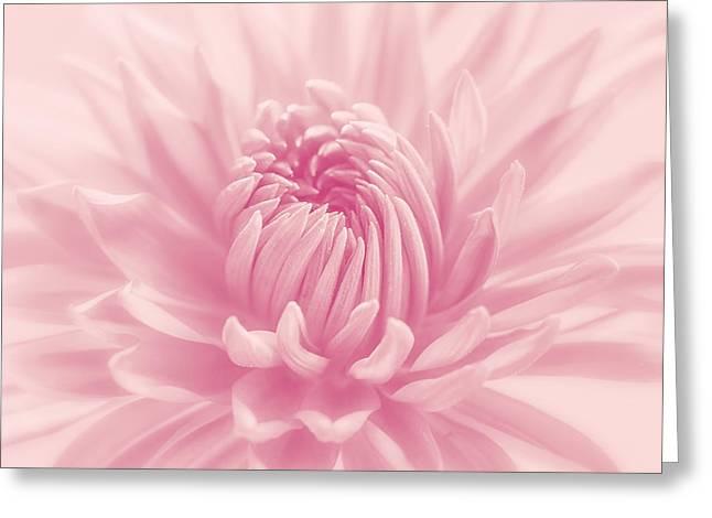 Raspberry Smoothie Greeting Card by Kim Hojnacki