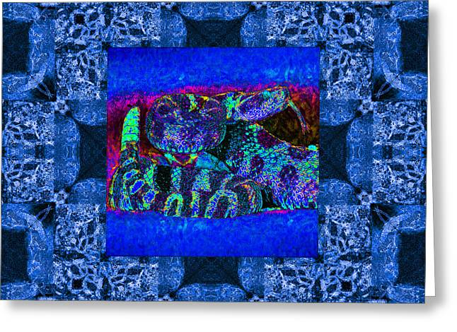 Rattlesnake Abstract Window 20130204m180 Greeting Card by Wingsdomain Art and Photography