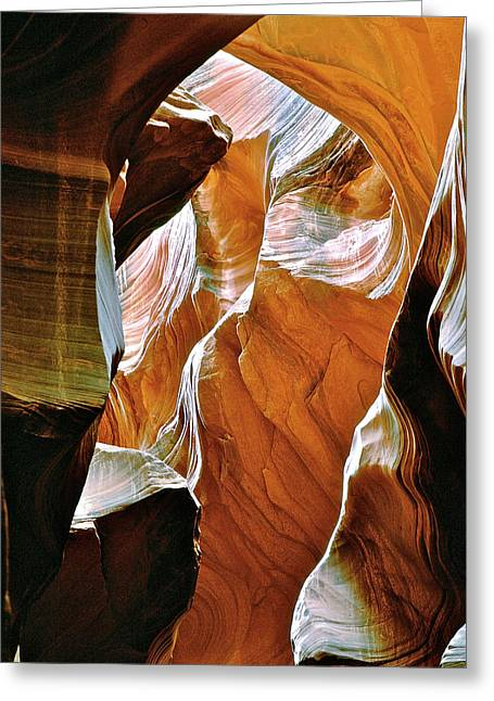 Rattlesnake Canyon Greeting Card by Ed  Riche