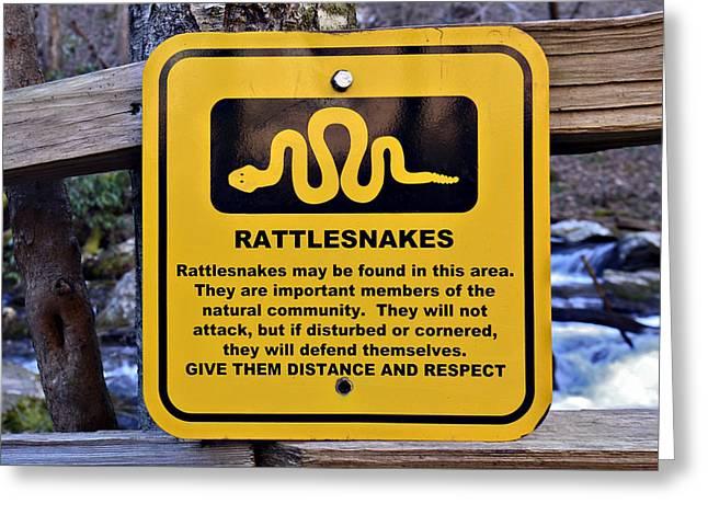 Rattlesnakes Greeting Card by Susan Leggett