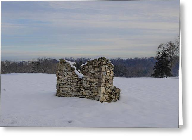 Ravages Of Winter Greeting Card by Bill Cannon