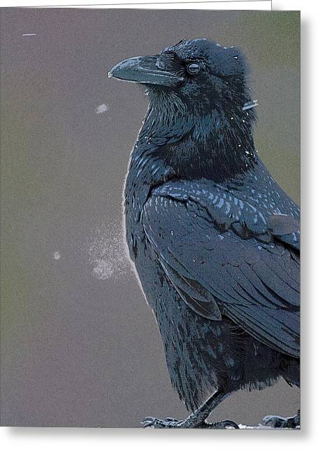 Raven In Snow- Abstract Greeting Card by Tim Grams