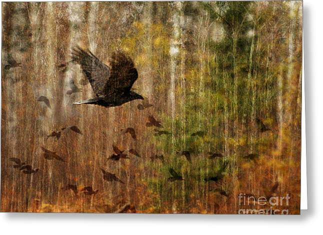 Raven Wood Greeting Card by Judy Wood