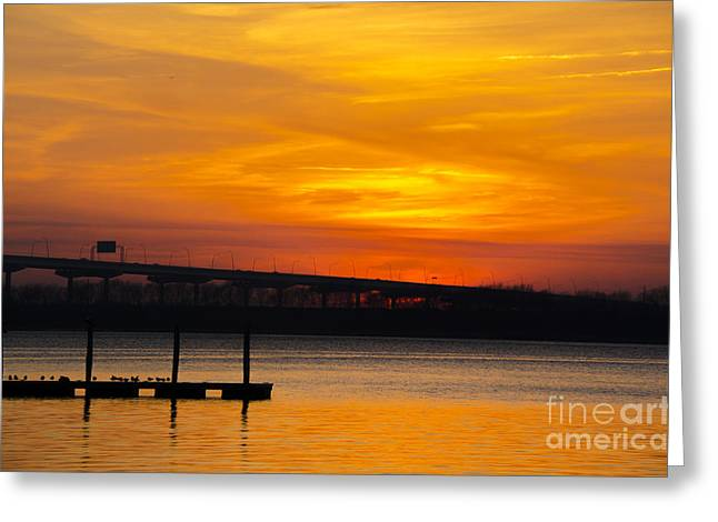 Greeting Card featuring the photograph Orange Blaze by Dale Powell