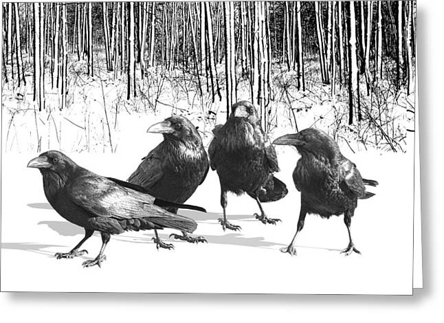 Ravens By The Edge Of The Woods In Winter Greeting Card