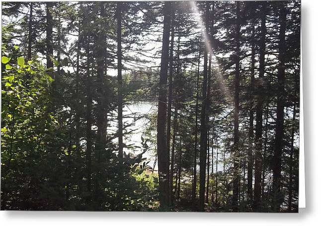 Ray O Light Greeting Card by Melissa McCrann