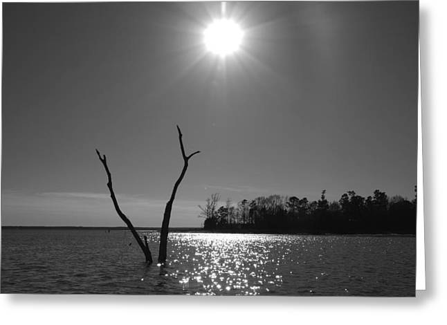 Greeting Card featuring the photograph Rayburn Sky by Max Mullins