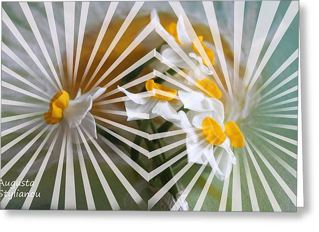 Rays And Flowers Greeting Card