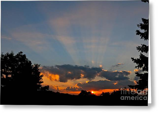 Rays And Shine Greeting Card by Jay Nodianos