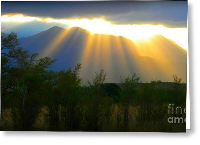 Rays From Heaven Greeting Card by Michelle Frizzell-Thompson