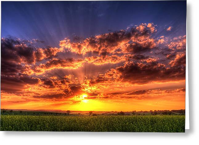 Rays Of Light Greeting Card by Steffen Gierok