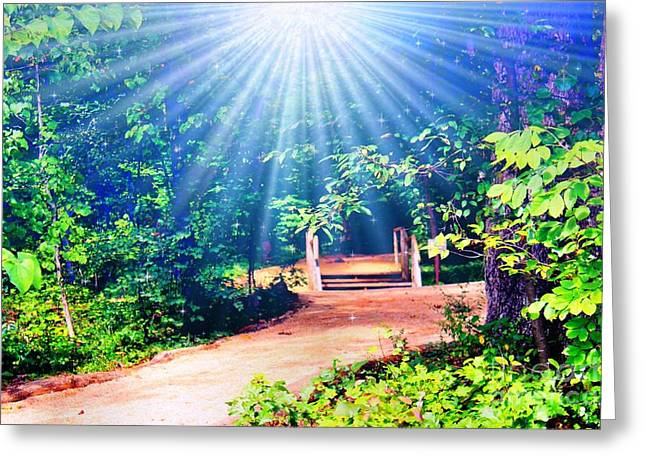 Rays Of Light To Guide The Path Greeting Card by Judy Palkimas