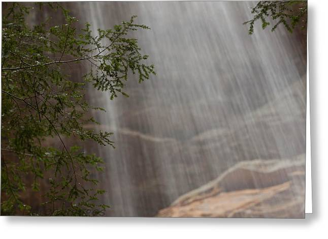 Greeting Card featuring the photograph Rays Of Water by Haren Images- Kriss Haren
