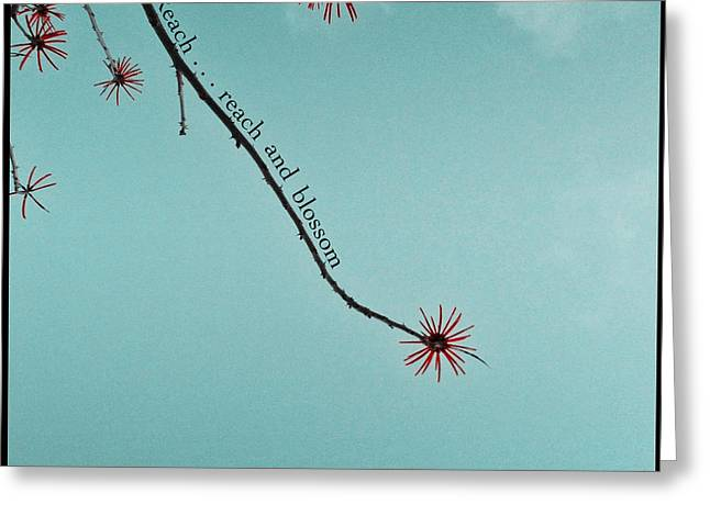Reach And Blossom Greeting Card
