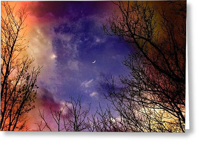 Reaching For The Moon 2 Greeting Card by Susan Crossman Buscho