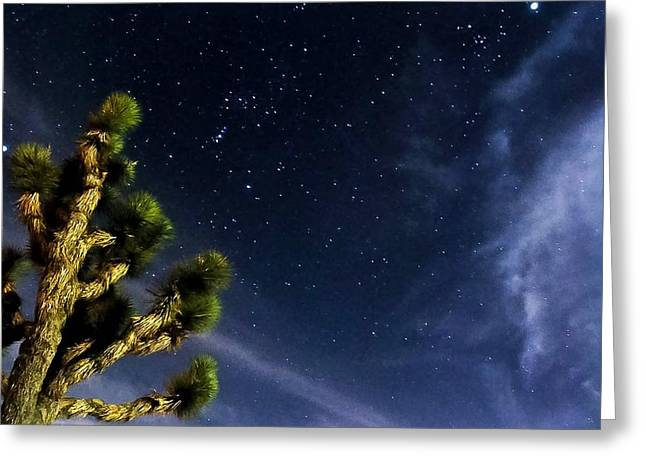 Reaching For The Stars Greeting Card by Angela J Wright